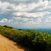 View From White Top Mountain, VA II