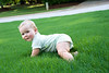 B crawling in grass