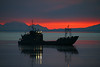 7.24.14: A military ship participating in an earthquake preparedness drill makes a nice silhouette in Cook Inlet at sunset as seen from the Anchorage small boat launch.