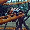 Roller coaster at Busch Gardens in Tampa, FL