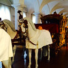 Amazing golden carriages - Schloss Nymphemburg - Munich - Mon Sept 1