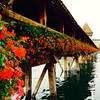 Lucerne's famous Chapel Bridge, built in 1333! - Switzerland - Tuesday, Sept 9, 2014