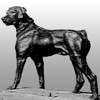 RFP Original Dog - Dog Statue on the Farm - Detail - Gray Gradient Background