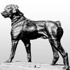 RFP Original Dog - Dog Statue on the Farm - Detail - High Contrast - Light Gradient Background