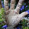 Hand in the Garden