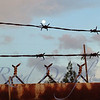 Moon rising over barbed wire