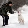 John Cross Patches fields snowballs tossed by her owner, Todd Smith, on Tuesday.
