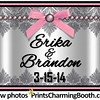 3-15-14 Erika and Brandon Wedding Logo