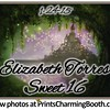 1-24-15 Elizabeth Torres Sweet 16 logo - option 4