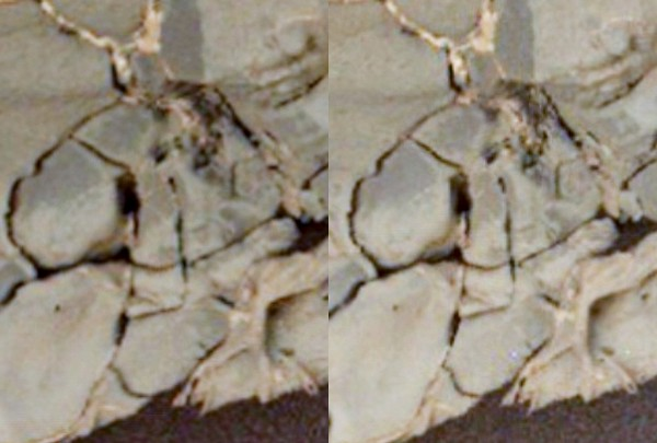 0132MH0243000024C0-filaments in rocks-crop3a-autoEQ-sharpened-3D-lws