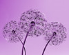 I made it a purple sculpture of dandelions    July 2014