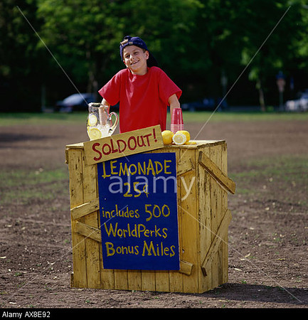 P1.4 Lemonade Stand  Choice 14 of 16  AX8E92