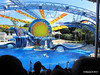 Dolphin Show Blue Horizons Theater SeaWorld 21-09-2013 15-19-33