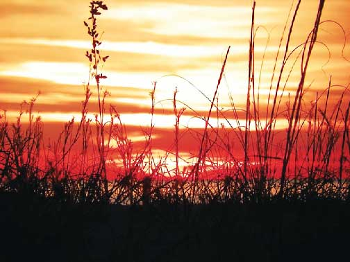 Lacy Eaves of Orange Beach shares pictures of a sunset behind Phoenix East.