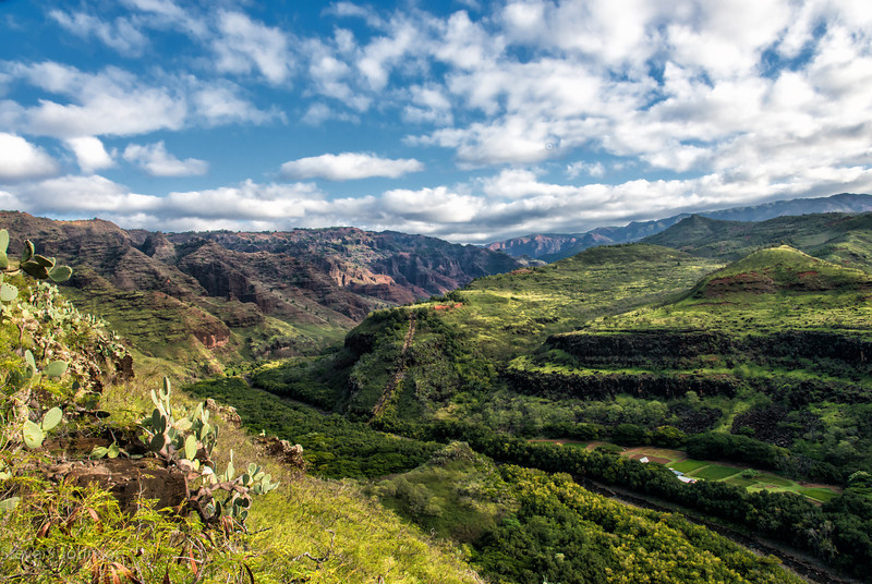 Waimea Canyon, Kauai, Hawaii<br /> Hiking in paradise!