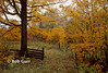 Fall Colours, Haliburton County, Ontario 0051.jpg