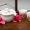 Eilong Porcelain Set - Gentle Peony-1
