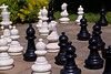 Be the Chess Player, Not the Chess Piece