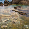 Tidepool on the Kapalua Coastal Trail, Maui, Hawaii
