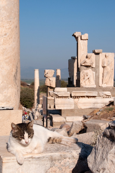 Ephesus with Cat-2