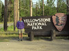 Me Yellowstone sign01