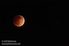 The moon in total eclipse, with a star to its right  (4/15/2014) TAMRON SP 150-600mm F/5-6.3 Di VC USD A011 @ 400mm f6.3 1/8s ISO3200