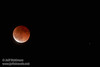 The moon in total eclipse, with a star to its right  (4/15/2014) TAMRON SP 150-600mm F/5-6.3 Di VC USD A011 @ 428mm f6.3 1/3s ISO2500