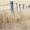 C 04  Country Fencing