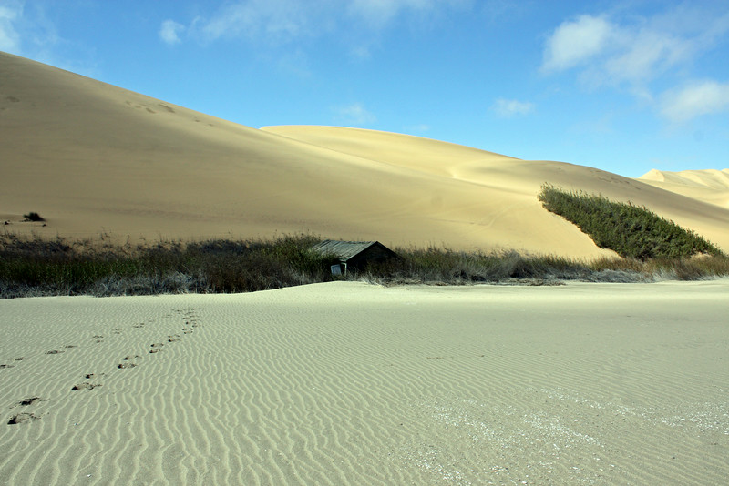 Empty Cabin on a Deserted Beach