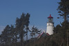 Heceta Head Lighthouse.  South of Yachats, OR.