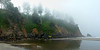 Neskowin Shore in Fog