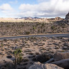 Simon and I took a trip out to Joshua Tree National Park. It looks a lot like this.