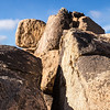 Rocks in Joshua Tree.