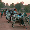 Villagers Returning Home in the Sunset