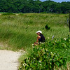 Elizabeth Morton National Wildlife Preserve Sag Harbor New York