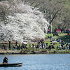Boaters at the Lake in Central Park NYC