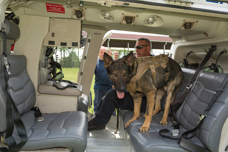 k9training_helo_GA8A4956