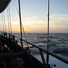 Deep Sea Fishing Sunset (1 of 1)