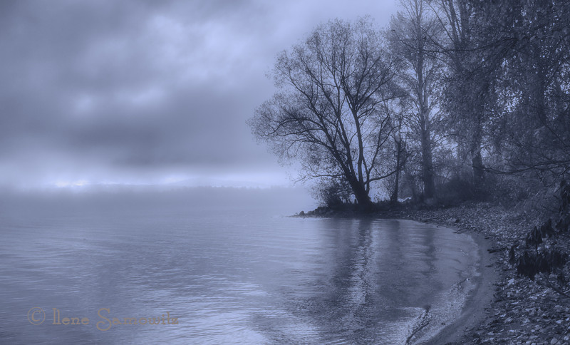 12-7-12 Foggy morning at Matthews Beach