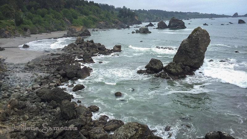 Luffenholtz Beach in Humboldt County California.