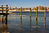 <center>January 16, 2009<br>Piling On<br><br>As I said before, I love these old dock pilings.  These four stand out on their own in the Seekonk River near a dilapidated old dock.  It's not at all clear what they were ever used for, though.  The buildings in the background to the left are in downcity Providence.<br><br>Bold Point Park<br>East Providence, Rhode Island</center>