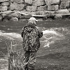 Fishing Season's Open