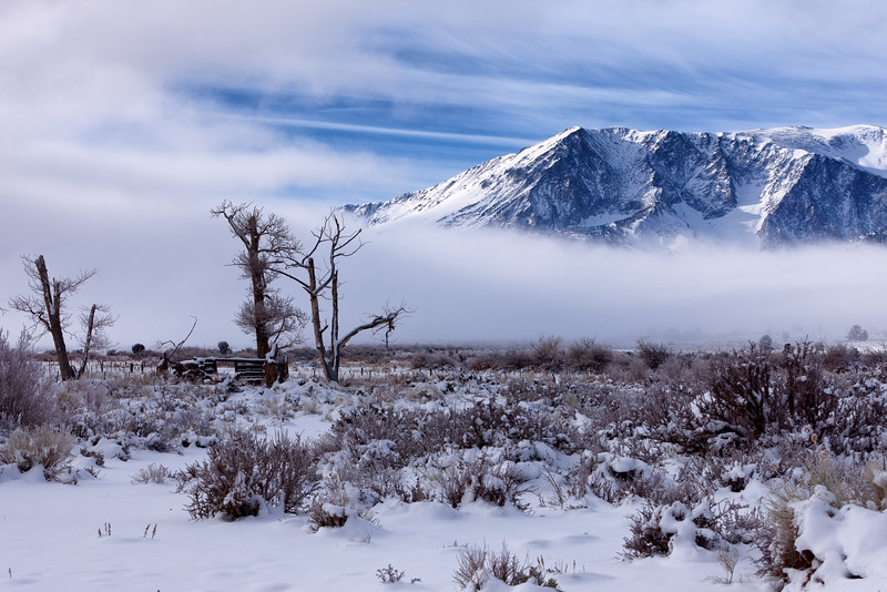 Ranch and Mount Lewis, Mono County, CA