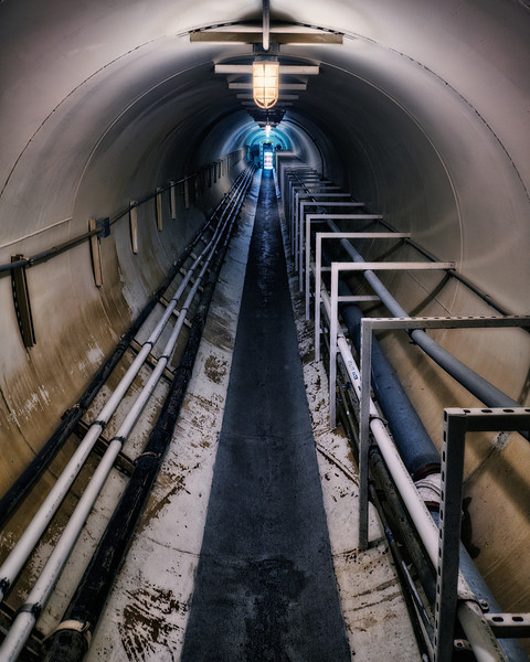 South Lung Tunnel: Low Access