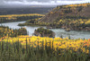 """Fall Colors Around the Yukon River"" Yukon Territory, Canada September 2013"