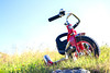 """""""My First Ride""""<br /> Tricycle, Iceland<br /> August 2012"""