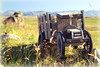 """""""The Little Wagon That Could""""<br /> Weathered Wooden Wagon, Iceland<br /> August 2012"""