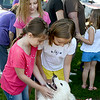 Morgan, 10, and Laura Freeman, 9, of North Ridgeville, and Emily DeRonde, 8, of Avon, play with Evie the samoyed dog during Meet the Breeds at the Avon Public Library on Aug. 16. KRISTIN BAUER | CHRONICLE