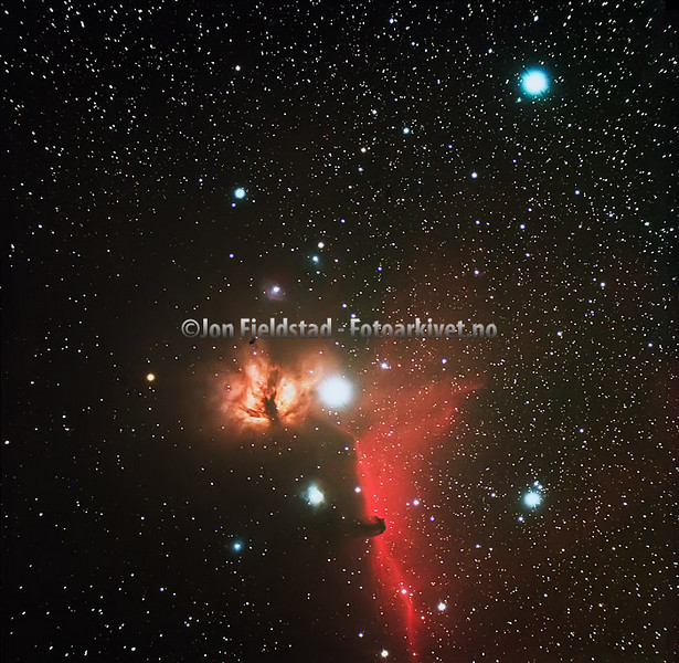 FLAMMETÅKEN NGC 2024 - HESTEHODETÅKEN B33 OG IC 434 - FLAME NEBULA  NGC 2024 - HORSEHEAD NEBULA B33 AND BRIGHT RED EMISSION NEBULA IC 434.