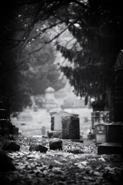 Scene in the cemetery